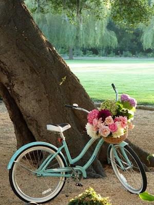noleggio bici a peschiera del garda