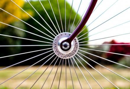 biciclette mantova